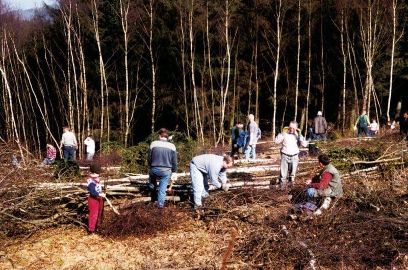 Holz stellen - Ostern in Attendorn