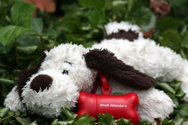 gassibox - Service für Hundebesitzer in Attendorn
