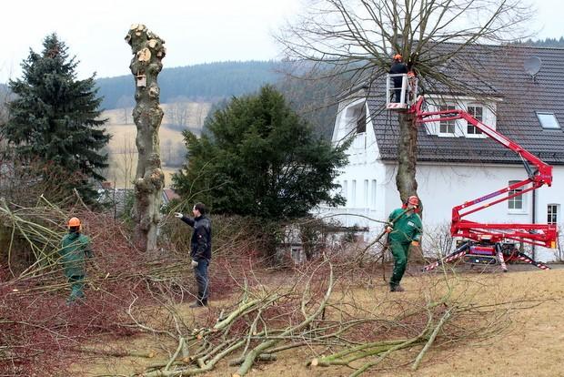 Werthmann Werkstätten - Abteilung Attendorn Garten- und Anlagenpflege