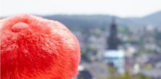hettwich-attendorn