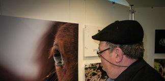 Fotoausstellung Südsauerlandmuseum