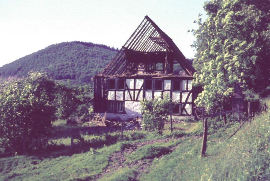 waldenburg2
