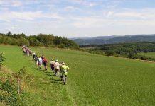Wandern auf dem Sauerland-Höhenflug