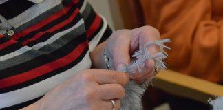 Handarbeitskreis Neu-Listernohl zu Gast in Haus Mutter Anna 2016 Attendorn