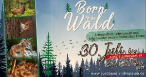 born to be wald - suedsauerlandmuseum