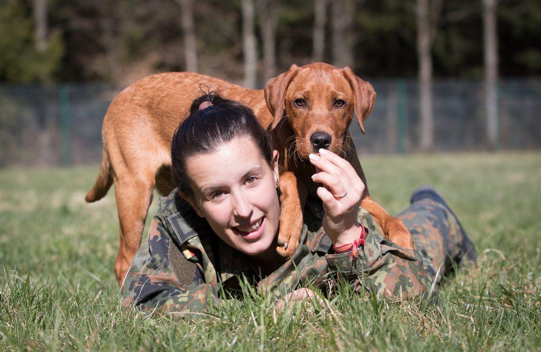 attendorner geschichten - Hundekalender