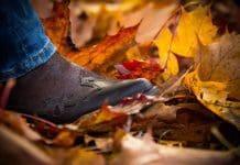 Schuh-Trends dieser Saison 2018/19