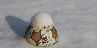 Sport im Freien - Fussbal im Schnee